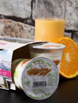 Yogur Natural Desnatado de Sieso Villa Villera